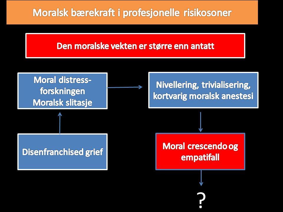 Ansvar i moralske risikosoner
