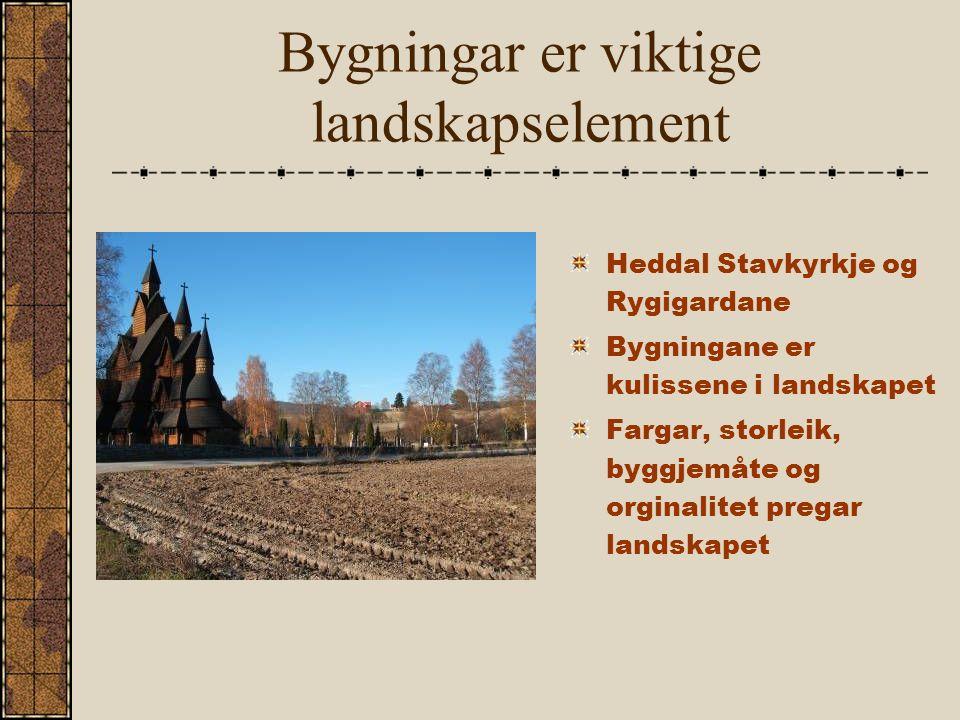 Bygningar er viktige landskapselement Heddal Stavkyrkje og Rygigardane Bygningane er kulissene i landskapet Fargar, storleik, byggjemåte og orginalitet pregar landskapet