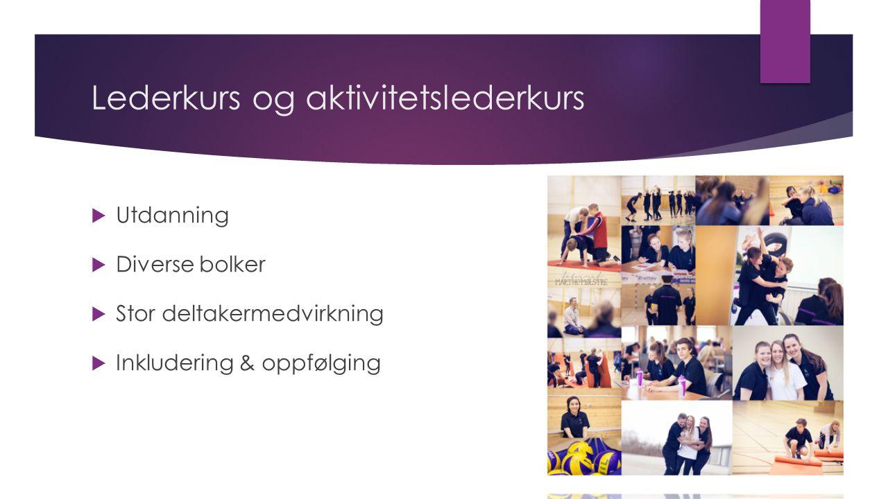 Lederkurs og aktivitetslederkurs  Utdanning  Diverse bolker  Stor deltakermedvirkning  Inkludering & oppfølging