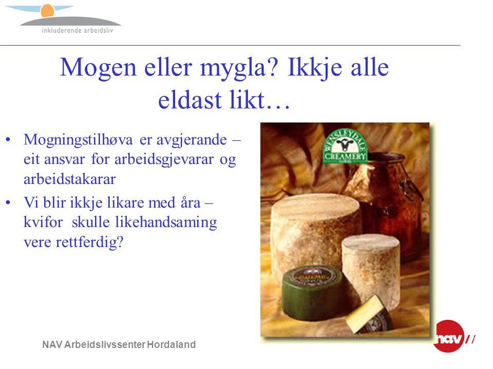 NAV Arbeidslivssenter Hordaland Kva skal til for å lykkast.