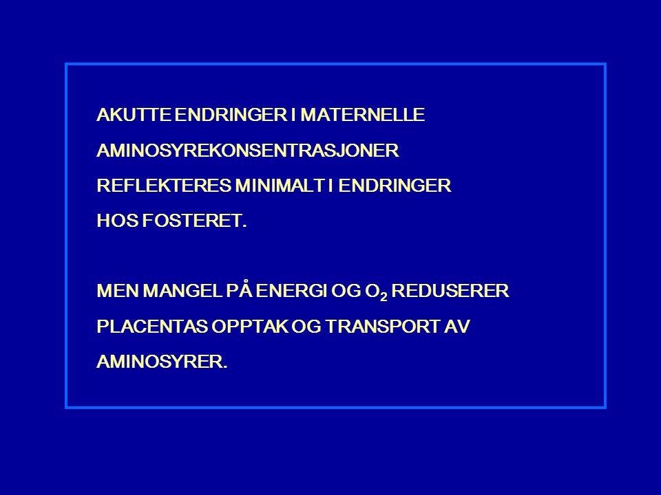 AKUTTE ENDRINGER I MATERNELLE AMINOSYREKONSENTRASJONER REFLEKTERES MINIMALT I ENDRINGER HOS FOSTERET.