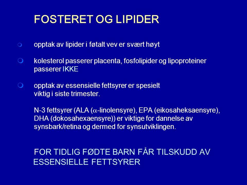 FOSTERET OG LIPIDER  opptak av lipider i føtalt vev er svært høyt  kolesterol passerer placenta, fosfolipider og lipoproteiner passerer IKKE  opptak av essensielle fettsyrer er spesielt viktig i siste trimester.