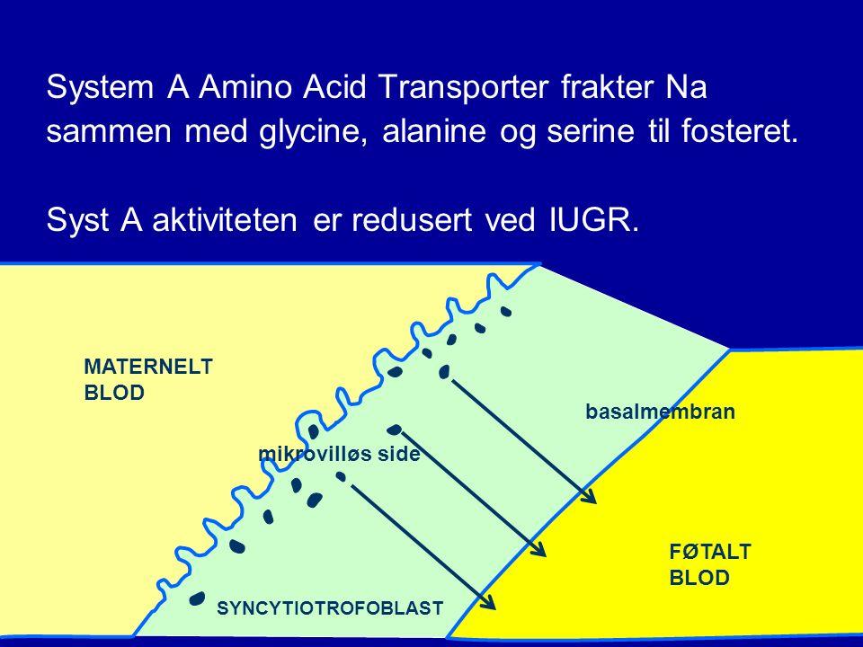 System A Amino Acid Transporter frakter Na sammen med glycine, alanine og serine til fosteret.