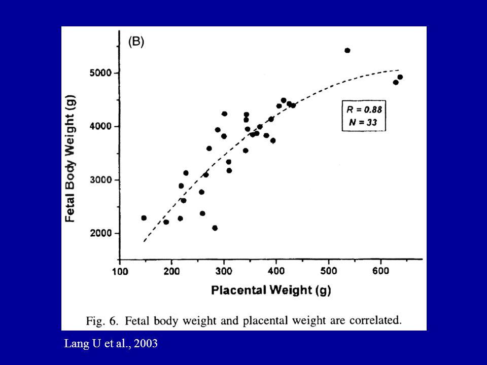 Lang U et al., 2003