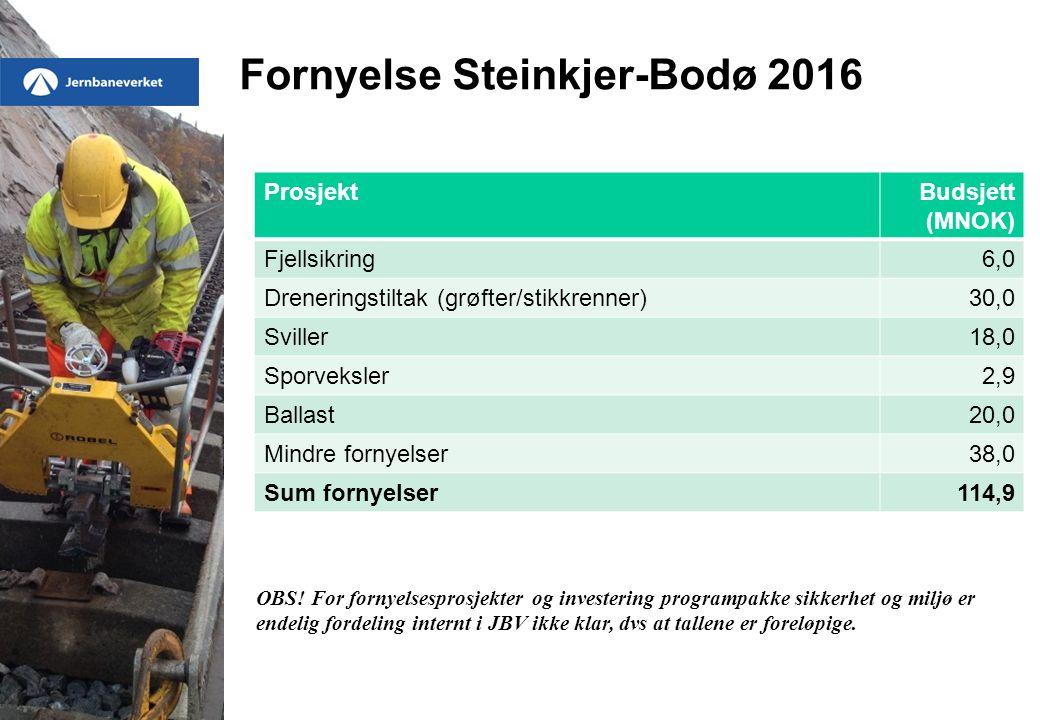 Fornyelse Steinkjer-Bodø 2016 ProsjektBudsjett (MNOK) Fjellsikring6,0 Dreneringstiltak (grøfter/stikkrenner)30,0 Sviller18,0 Sporveksler2,9 Ballast20,0 Mindre fornyelser38,0 Sum fornyelser114,9 OBS.