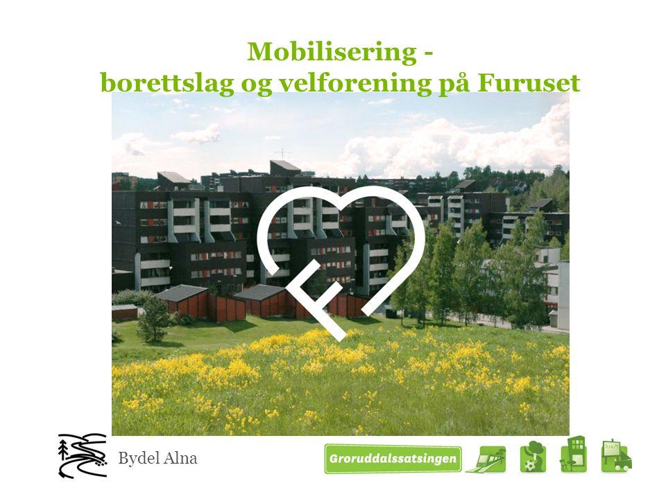 Mobilisering - borettslag og velforening på Furuset Bydel Alna