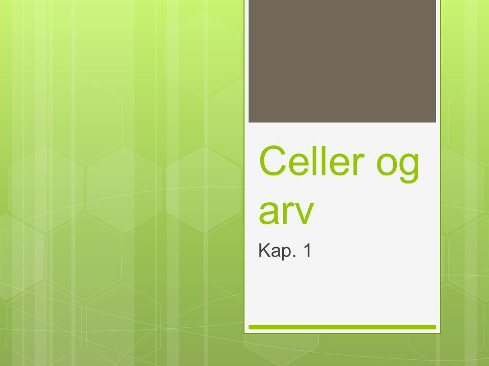 Celler og arv Kap. 1