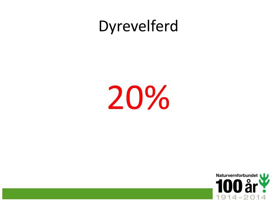 Dyrevelferd 20%