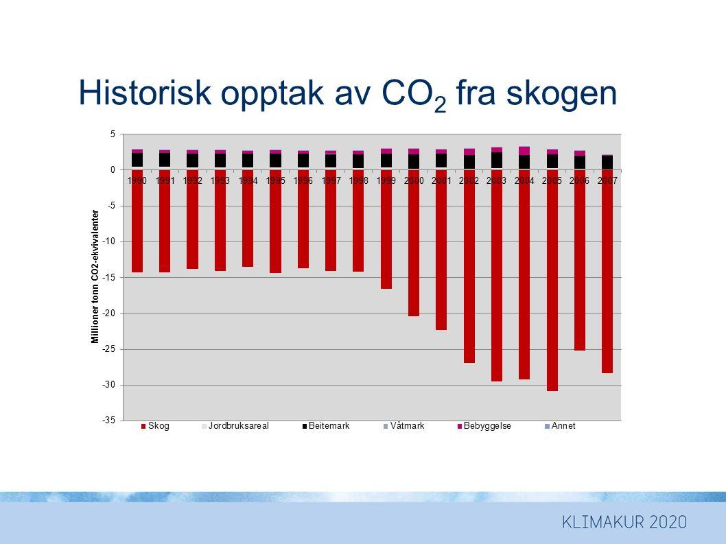 Historisk opptak av CO 2 fra skogen