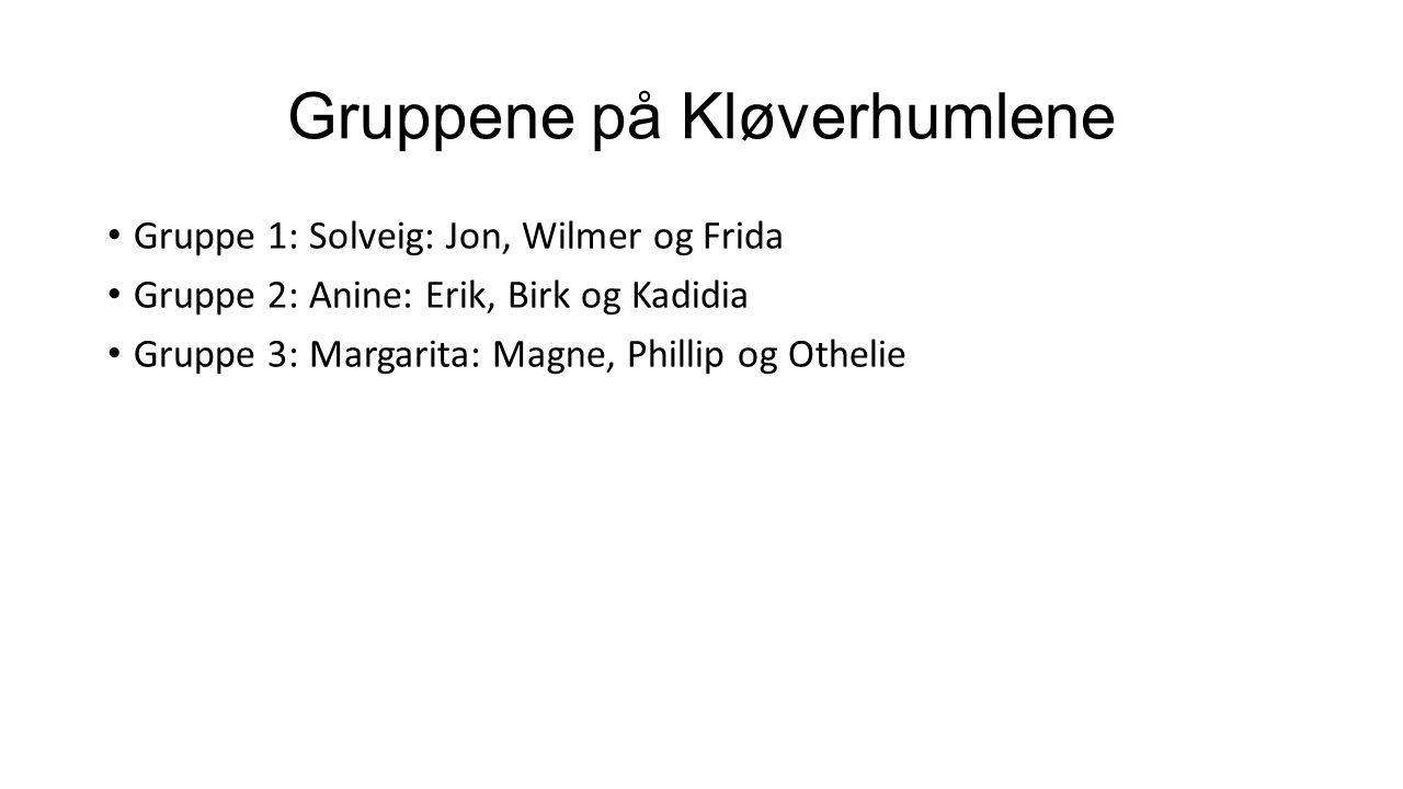 Gruppene på Kløverhumlene Gruppe 1: Solveig: Jon, Wilmer og Frida Gruppe 2: Anine: Erik, Birk og Kadidia Gruppe 3: Margarita: Magne, Phillip og Othelie