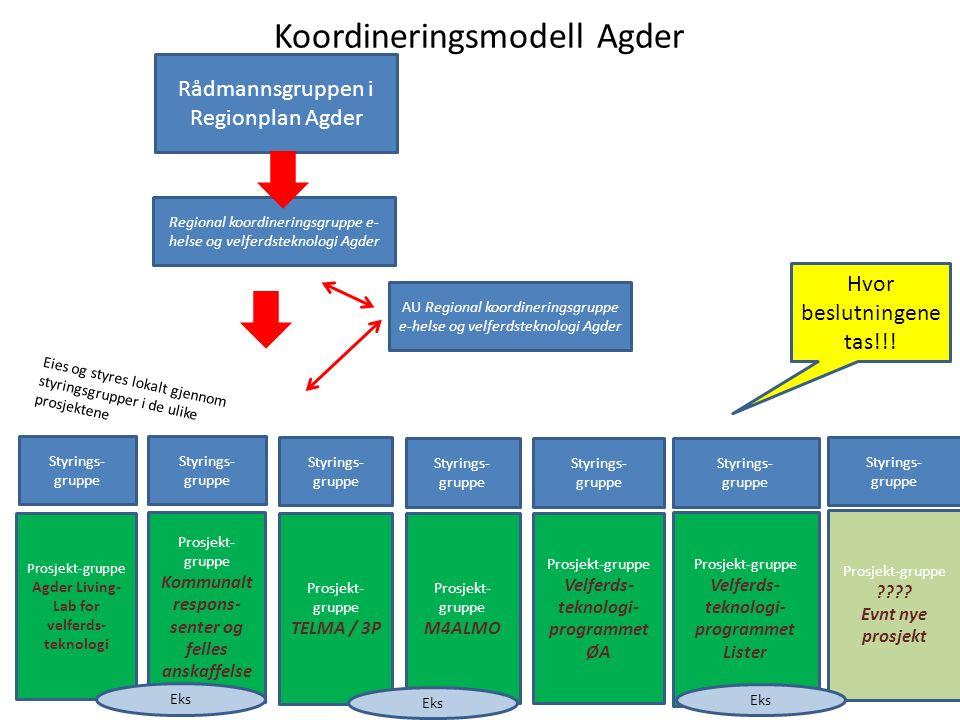 ( ) Leder RKG sitter i styringsgruppen for prosjektet.
