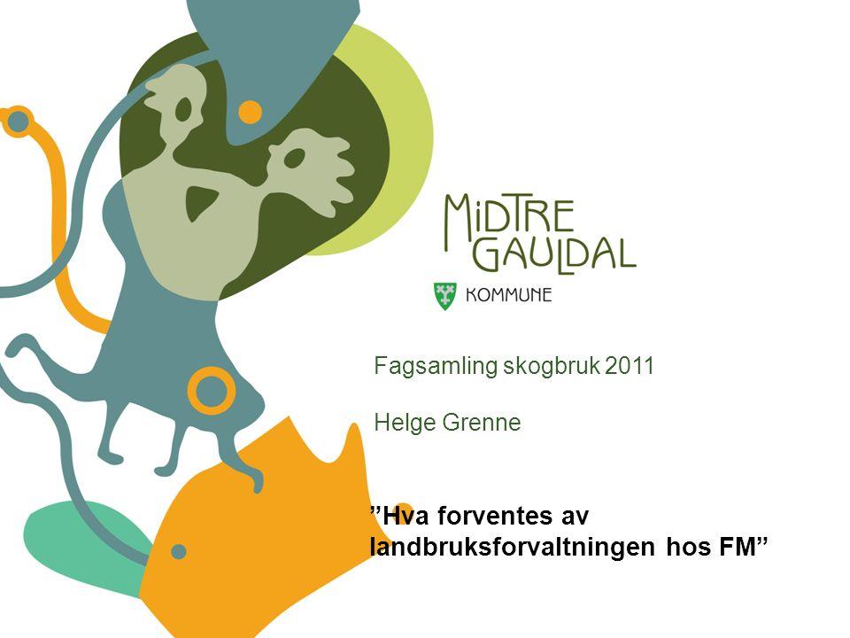 Fagsamling skogbruk 2011 Helge Grenne Hva forventes av landbruksforvaltningen hos FM