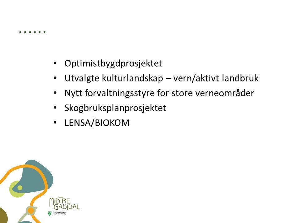 …… Optimistbygdprosjektet Utvalgte kulturlandskap – vern/aktivt landbruk Nytt forvaltningsstyre for store verneområder Skogbruksplanprosjektet LENSA/BIOKOM