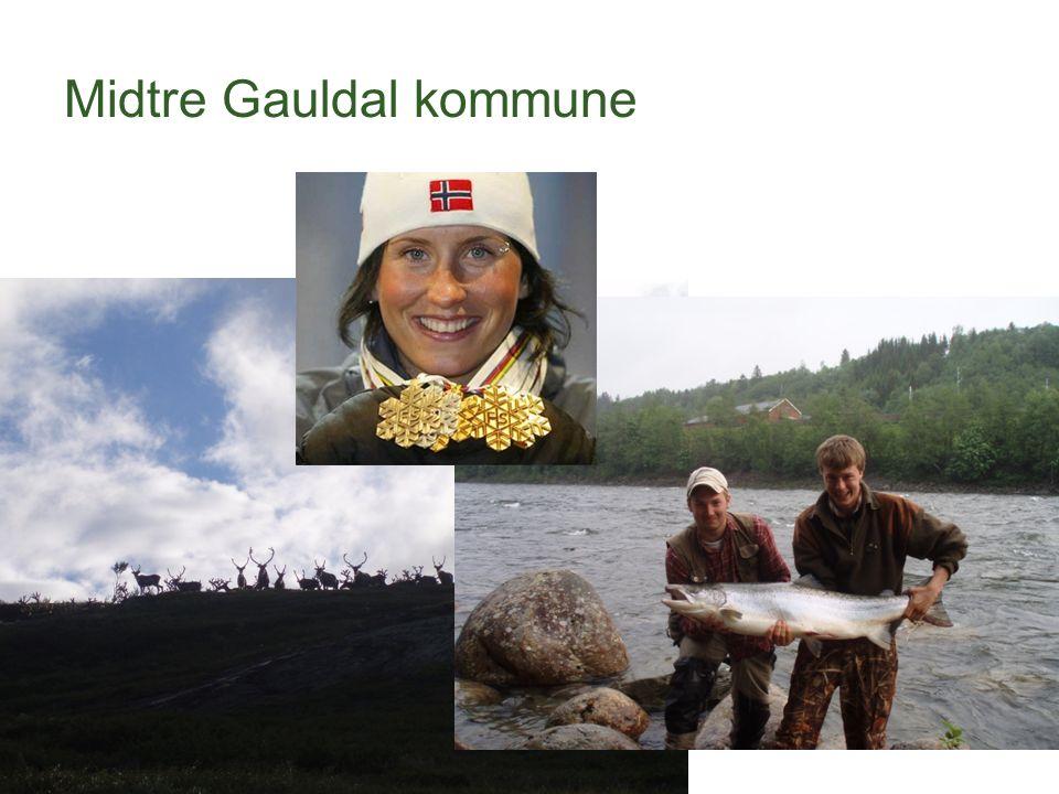 Midtre Gauldal kommune