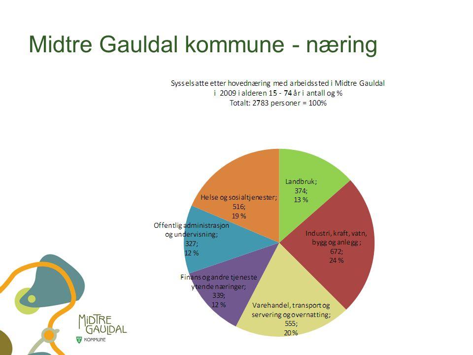 Midtre Gauldal kommune - næring
