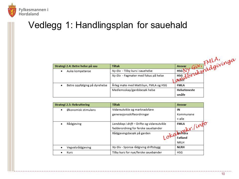 10 Vedlegg 1: Handlingsplan for sauehald Ny Giv, FMLA, Landbruksrådgivinga Lokal rekr./info