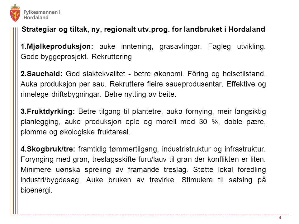 Strategiar og tiltak, ny, regionalt utv.prog.