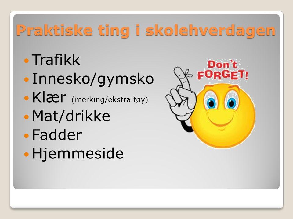 Praktiske ting i skolehverdagen Trafikk Innesko/gymsko Klær (merking/ekstra tøy) Mat/drikke Fadder Hjemmeside