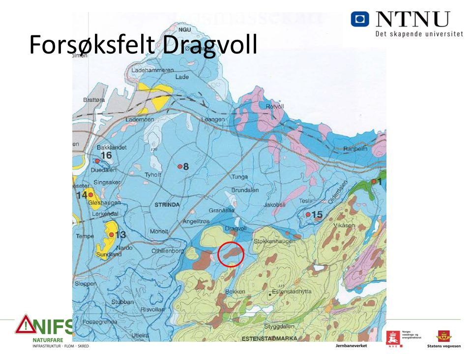 Forsøksfelt Dragvoll