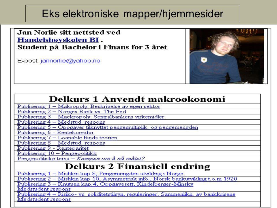 Eks elektroniske mapper/hjemmesider