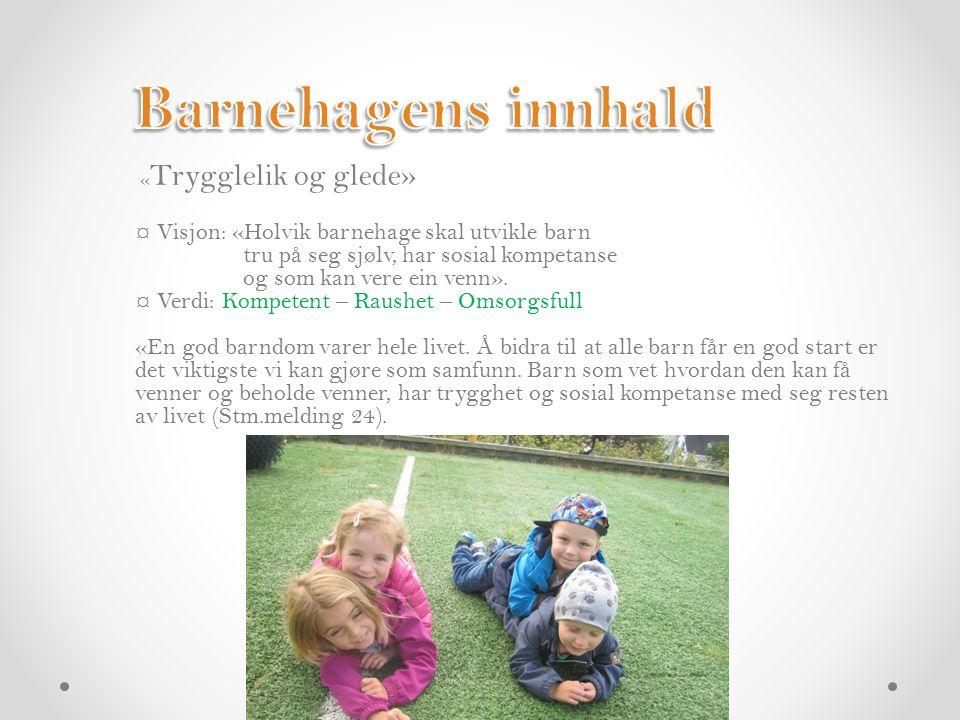 ¤ Vårt pedagogisk grunnsyn tek utgangspunkt i lov barnehagar og rammeplan.