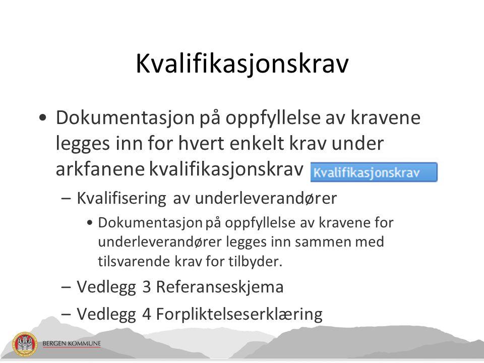 Kvalifikasjonskrav Dokumentasjon på oppfyllelse av kravene legges inn for hvert enkelt krav under arkfanene kvalifikasjonskrav –Kvalifisering av under