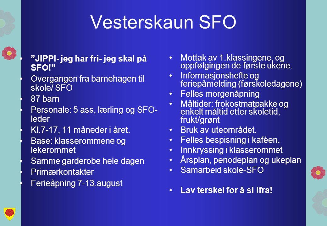 Vesterskaun SFO JIPPI- jeg har fri- jeg skal på SFO! Overgangen fra barnehagen til skole/ SFO 87 barn Personale: 5 ass, lærling og SFO- leder Kl.7-17, 11 måneder i året.