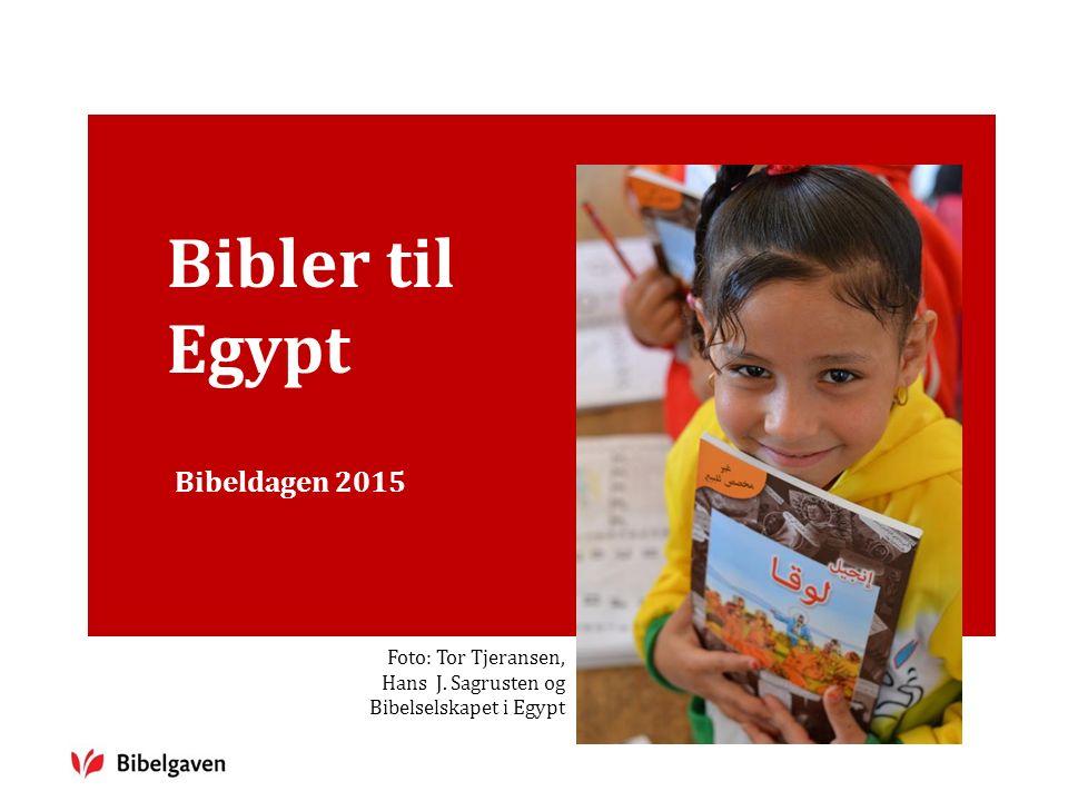 Bibler til Egypt Bibeldagen 2015 Foto: Tor Tjeransen, Hans J. Sagrusten og Bibelselskapet i Egypt