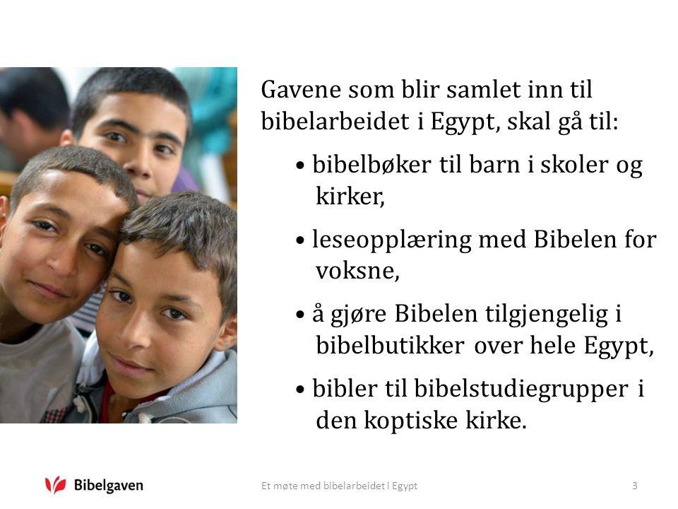 Et møte med bibelarbeidet i Egypt3 Gavene som blir samlet inn til bibelarbeidet i Egypt, skal gå til: bibelbøker til barn i skoler og kirker, leseoppl
