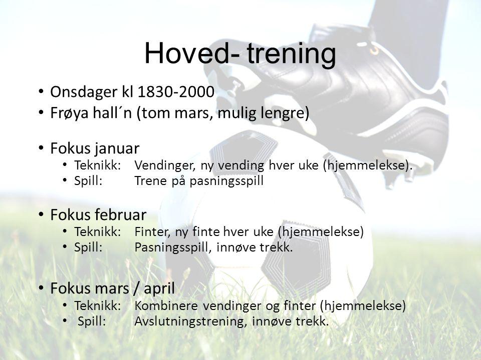 Hoved- trening Onsdager kl 1830-2000 Frøya hall´n (tom mars, mulig lengre) Fokus januar Teknikk: Vendinger, ny vending hver uke (hjemmelekse). Spill: