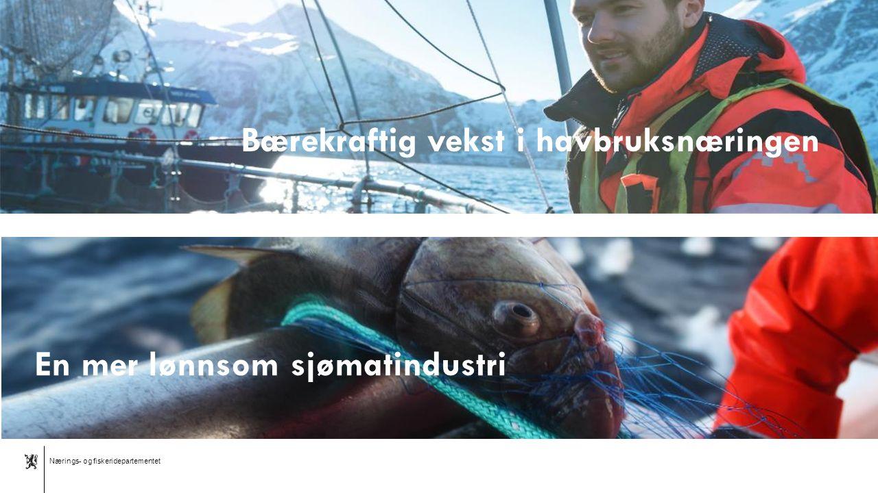Nærings- og fiskeridepartementet Norsk mal: Tekst med liggende bilde En mer lønnsom sjømatindustri Bærekraftig vekst i havbruksnæringen