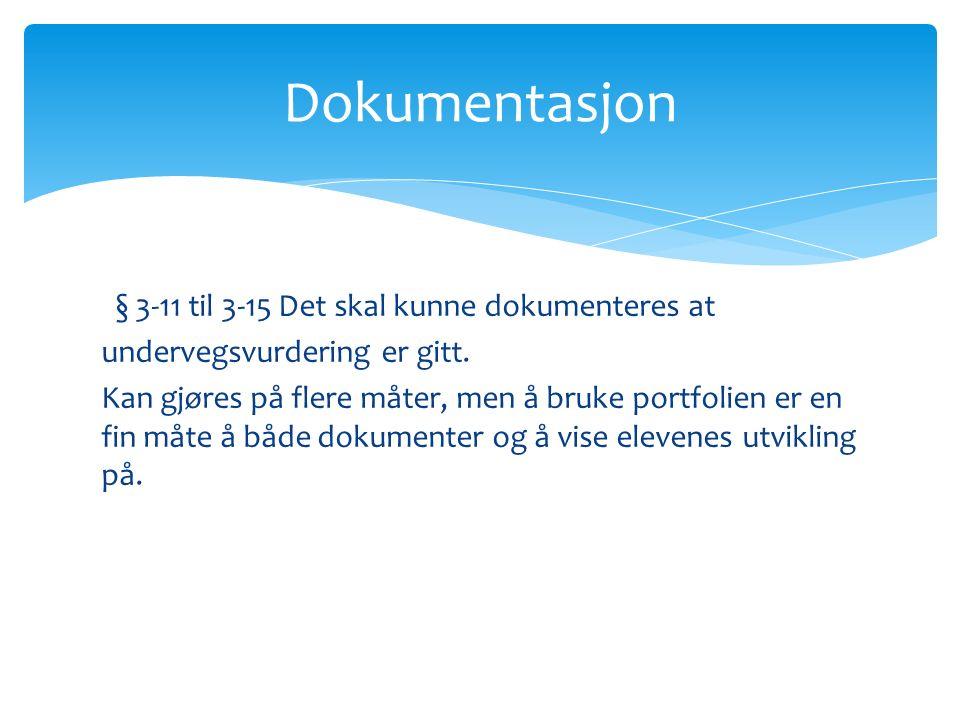 § 3-11 til 3-15 Det skal kunne dokumenteres at undervegsvurdering er gitt.