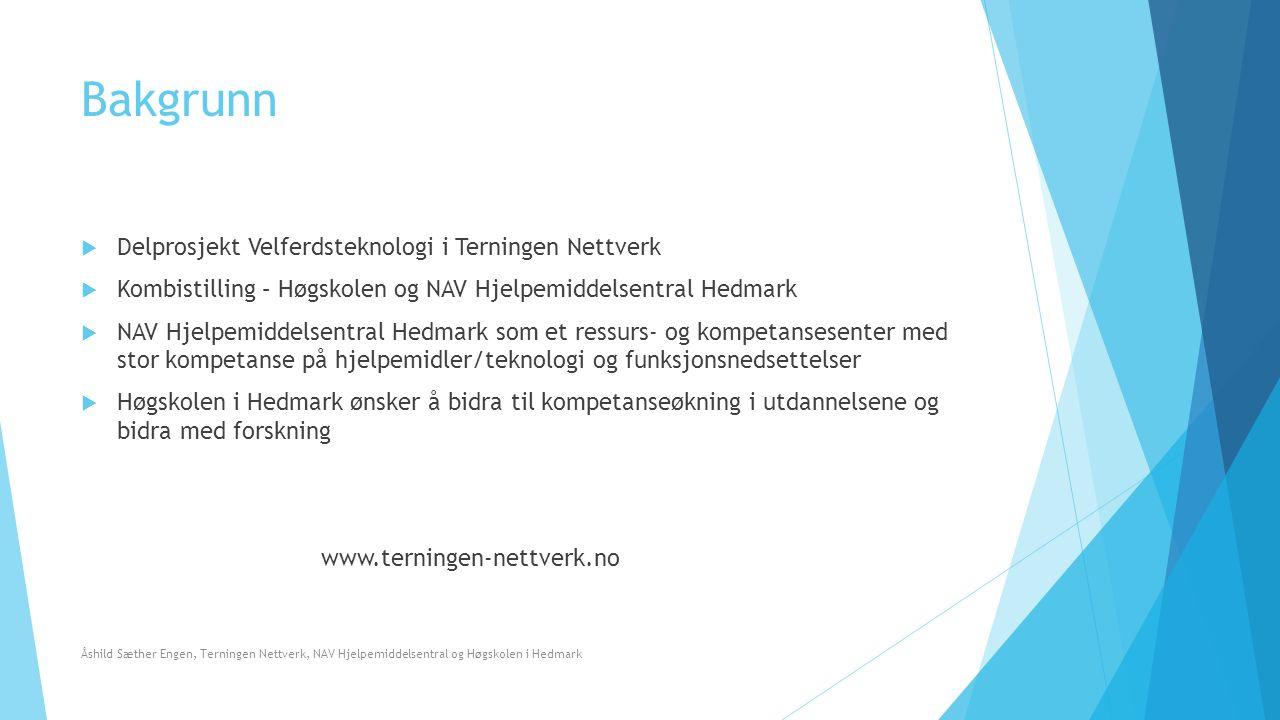 Sentrale dokumenter Åshild Sæther Engen, Terningen Nettverk, NAV Hjelpemiddelsentral og Høgskolen i Hedmark
