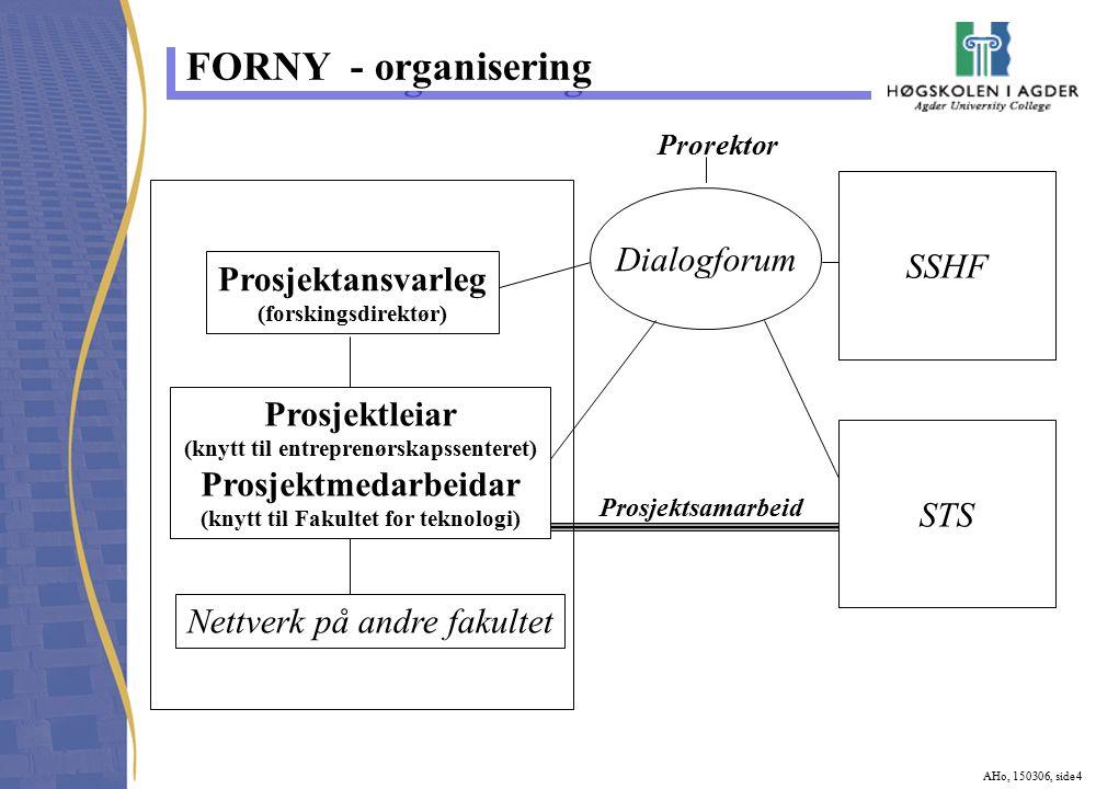 AHo, 150306, side 4 FORNY - organisering Prosjektansvarleg (forskingsdirektør) Nettverk på andre fakultet SSHF STS Dialogforum Prorektor Prosjektsamarbeid Prosjektleiar (knytt til entreprenørskapssenteret) Prosjektmedarbeidar (knytt til Fakultet for teknologi)