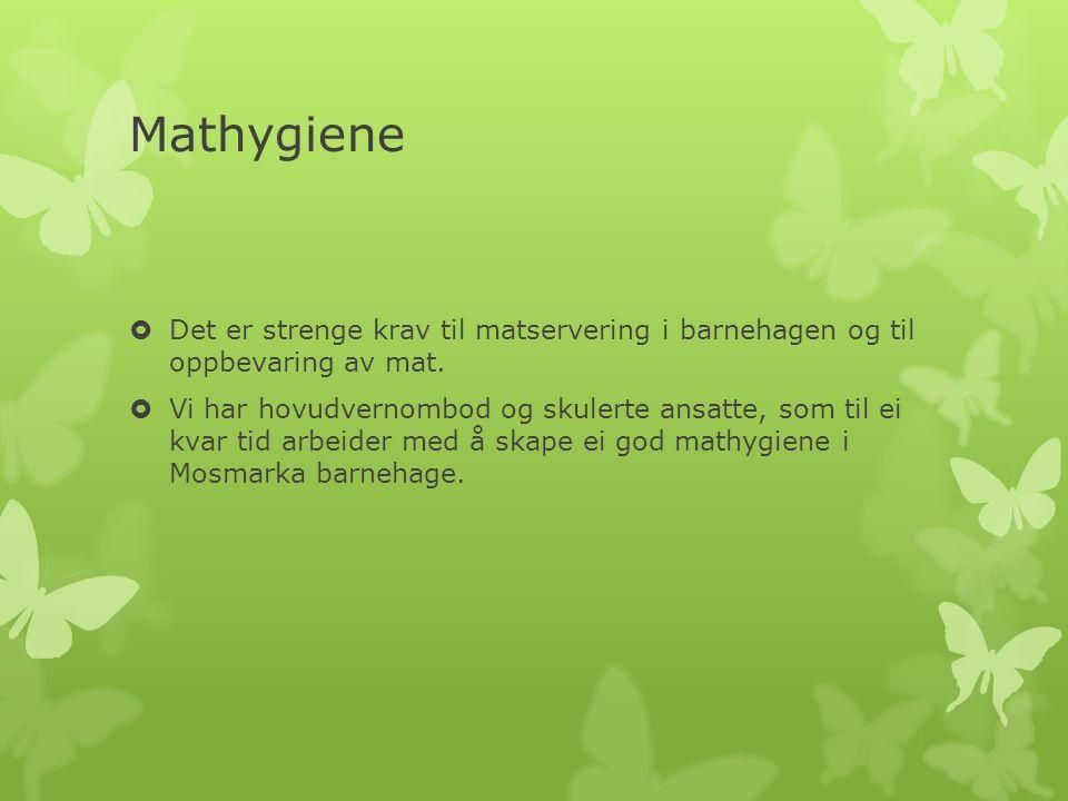 Mathygiene  Det er strenge krav til matservering i barnehagen og til oppbevaring av mat.