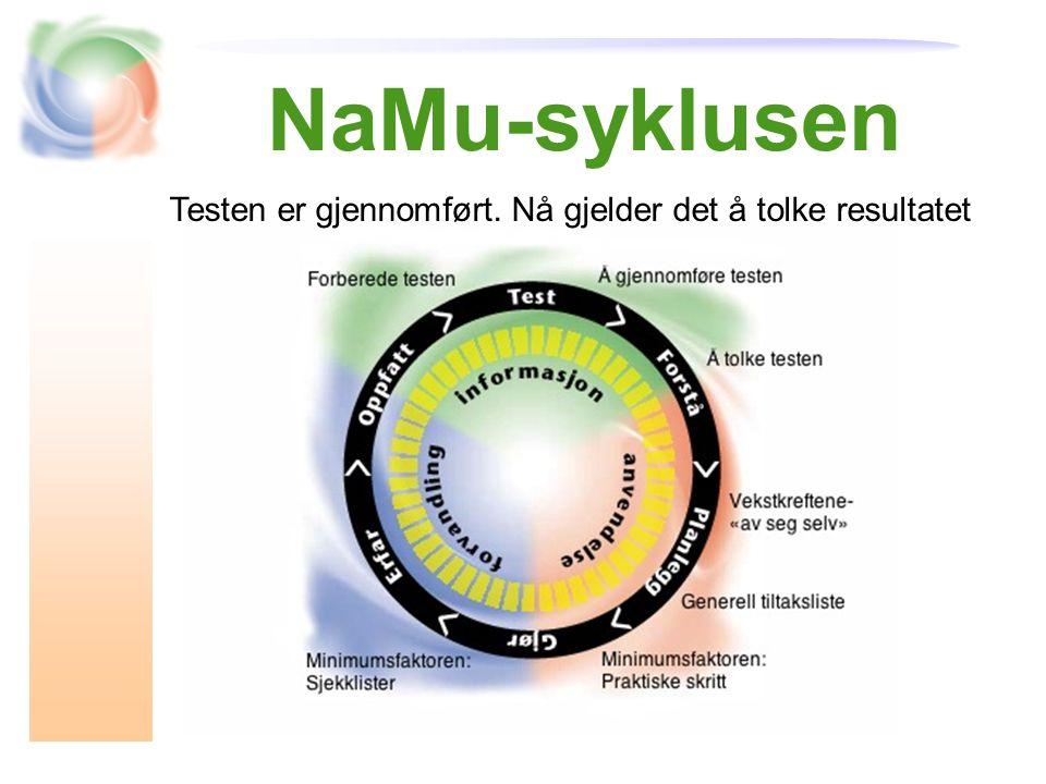 NaMu-syklusen Testen er gjennomført. Nå gjelder det å tolke resultatet