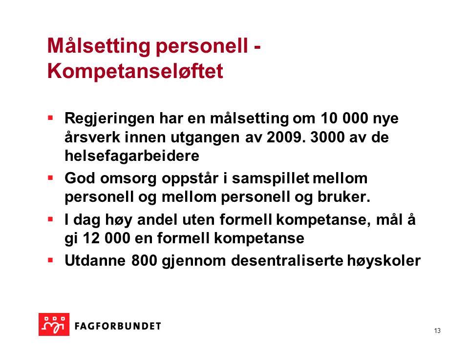 13 Målsetting personell - Kompetanseløftet  Regjeringen har en målsetting om 10 000 nye årsverk innen utgangen av 2009. 3000 av de helsefagarbeidere