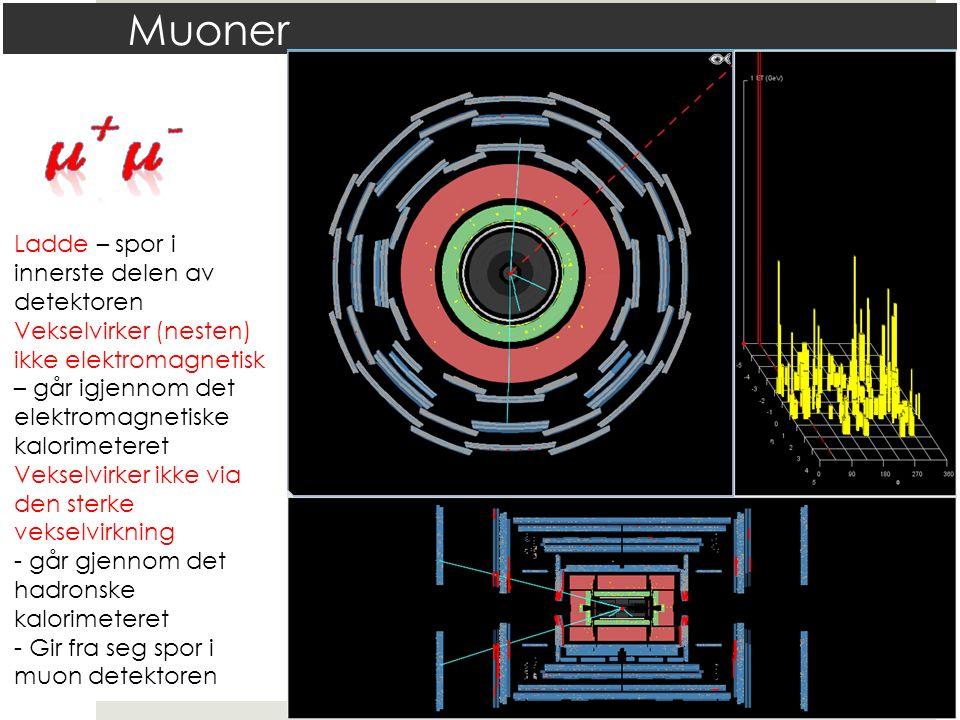 Muoner Ladde – spor i innerste delen av detektoren Vekselvirker (nesten) ikke elektromagnetisk – går igjennom det elektromagnetiske kalorimeteret Veks