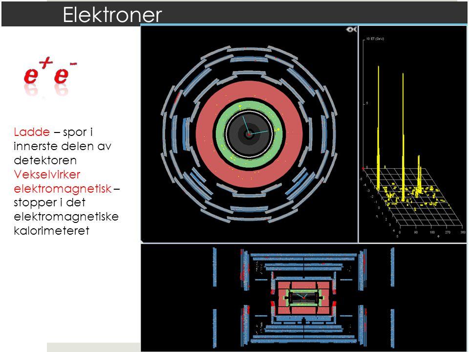 Elektroner Ladde – spor i innerste delen av detektoren Vekselvirker elektromagnetisk – stopper i det elektromagnetiske kalorimeteret