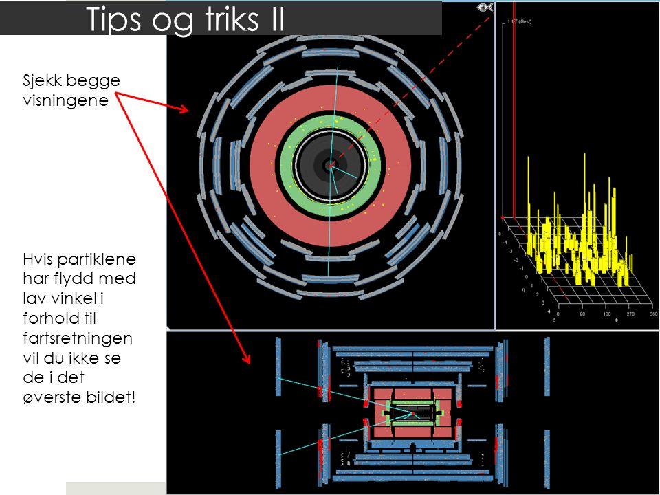 Tips og triks II Sjekk begge visningene Hvis partiklene har flydd med lav vinkel i forhold til fartsretningen vil du ikke se de i det øverste bildet!
