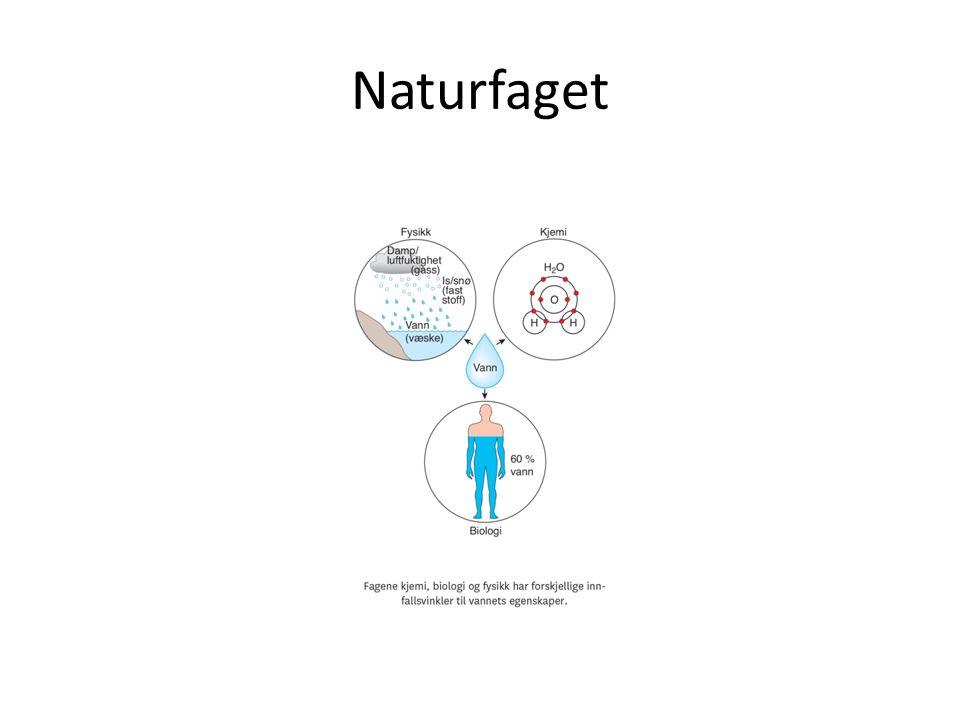 Naturfaget
