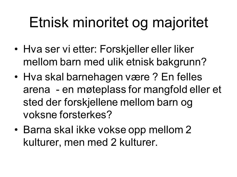 Etnisk minoritet og majoritet Hva ser vi etter: Forskjeller eller liker mellom barn med ulik etnisk bakgrunn.