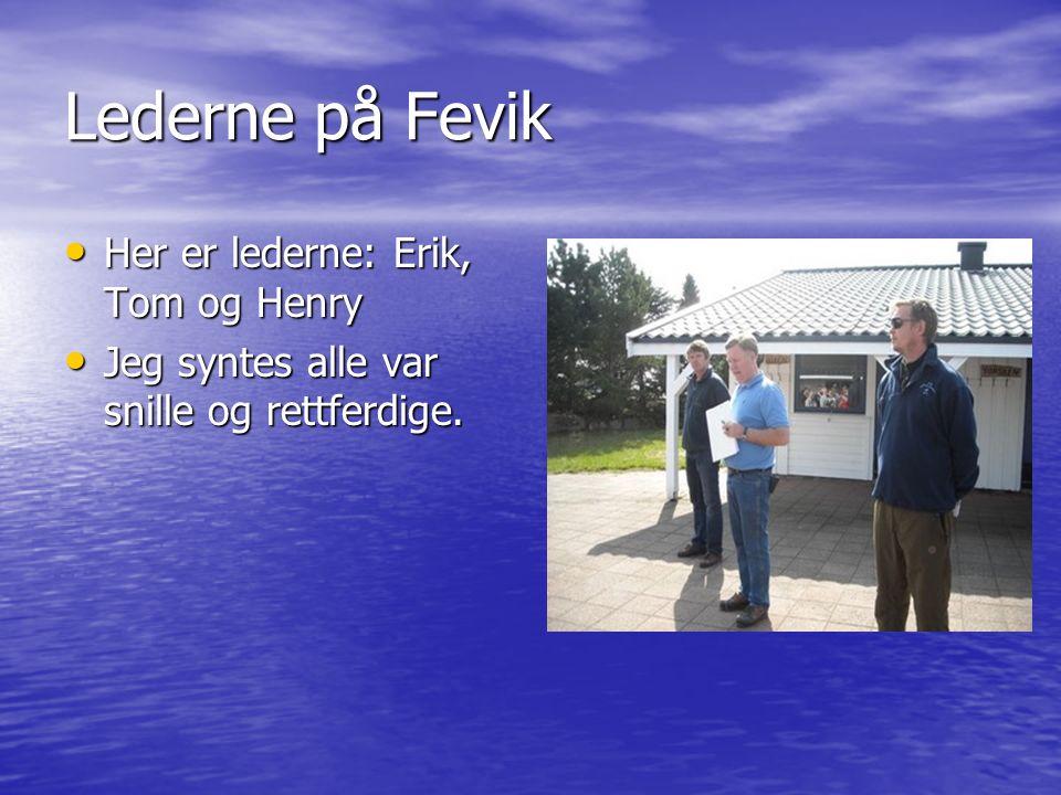 Lederne på Fevik Her er lederne: Erik, Tom og Henry Her er lederne: Erik, Tom og Henry Jeg syntes alle var snille og rettferdige.