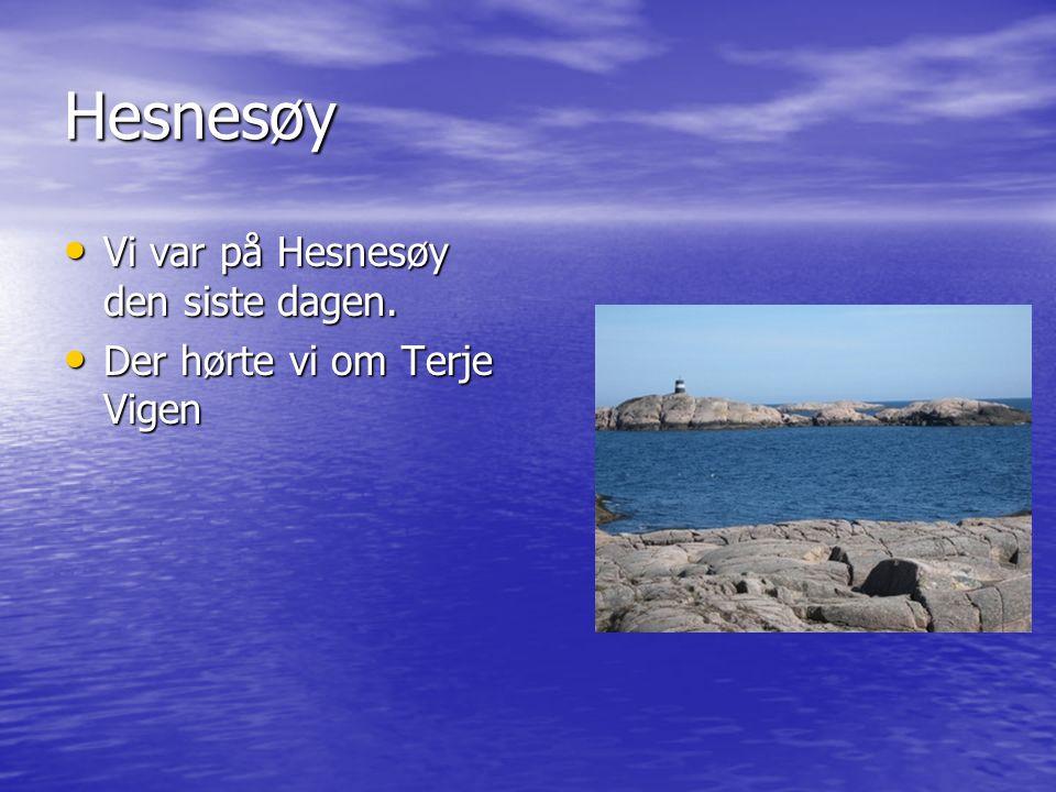 Hesnesøy Vi var på Hesnesøy den siste dagen. Vi var på Hesnesøy den siste dagen.