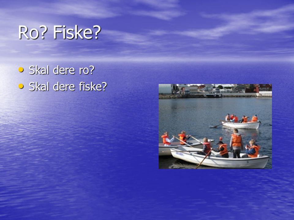 Ro Fiske Skal dere ro Skal dere ro Skal dere fiske Skal dere fiske