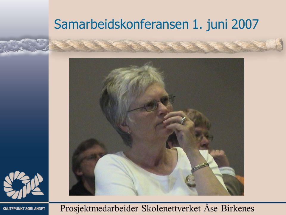 Prosjektmedarbeider Skolenettverket Åse Birkenes