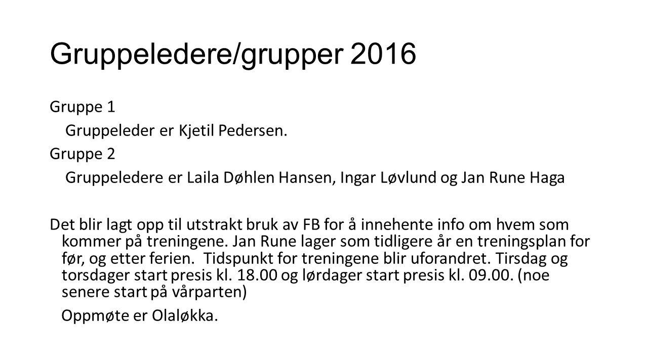Gruppeledere/grupper 2016 Gruppe 1 Gruppeleder er Kjetil Pedersen. Gruppe 2 Gruppeledere er Laila Døhlen Hansen, Ingar Løvlund og Jan Rune Haga Det bl