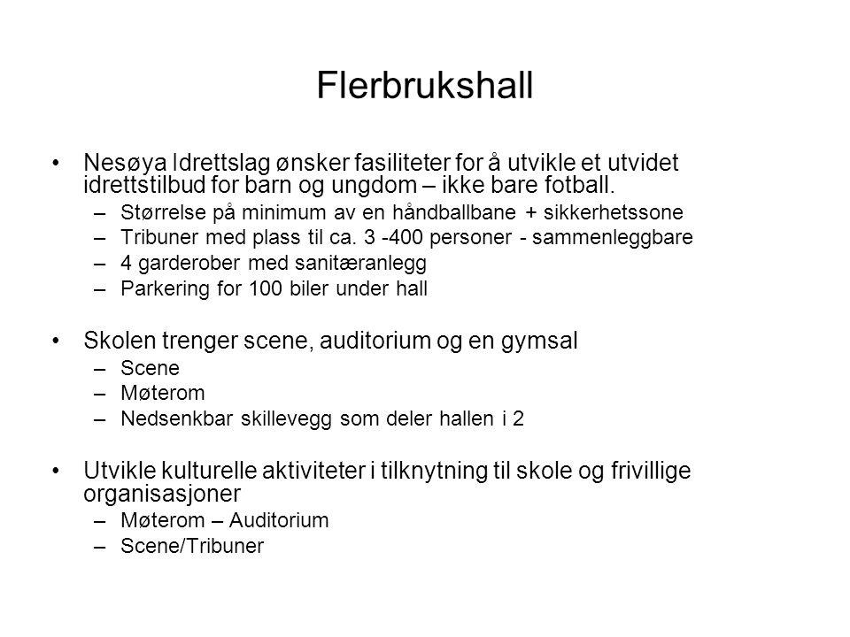 Flerbrukshall Nesøya Idrettslag ønsker fasiliteter for å utvikle et utvidet idrettstilbud for barn og ungdom – ikke bare fotball.