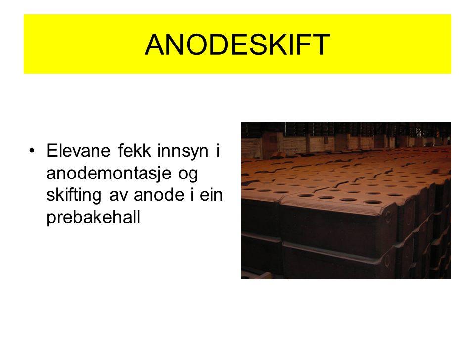 ANODESKIFT Elevane fekk innsyn i anodemontasje og skifting av anode i ein prebakehall