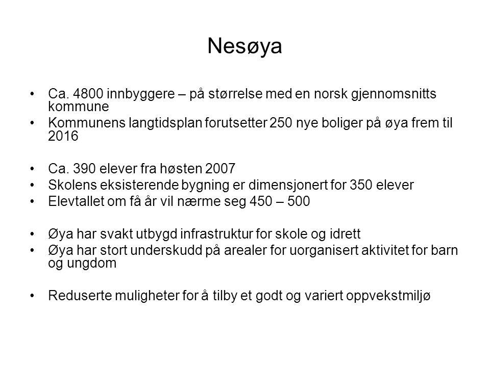 Nesøya Ca.